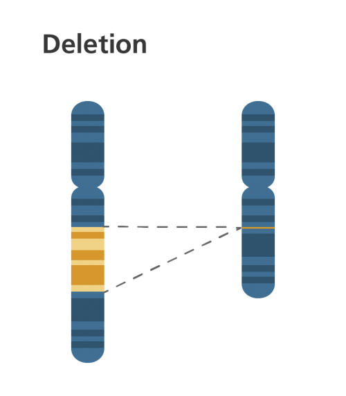 Chromosomal deletion